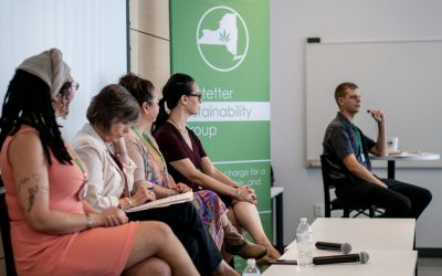 Castetter Sustainability Group Weighs in on Major Southern Tier Hemp Announcement