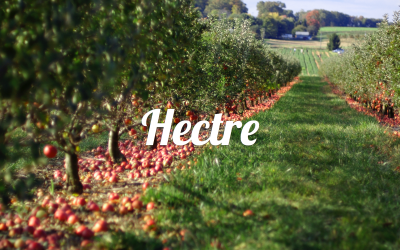 New Zealand-Based Orchard Management Startup Joins Koffman Incubator